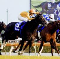 Heady stuff: Vodka, seen here winning the fall Emperor's Cup on Nov. 2, is likely to top the choices in Sunday's Japan Cup turf race in Tokyo. | KYODO PHOTO