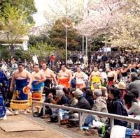 Rikishi are led in by a gyoji for a ring entering ceremony at Yasukuni Shrine.