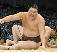 Hard landing: Mongolian yokozuna Hakuho grimaces after being tossed on to the dohyo by Aminishiki on the first day of the Kyushu Grand Sumo Tournament.   KYODO PHOTO