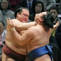 Brute force: Kisenosato uses neck thrusts to overwhelm Kakuryu at the Kyushu Grand Sumo Tournament on Friday. | KYODO