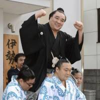 Heavy lifting: Harumafuji is carried by his stablemates after being promoted to yokozuna on Wednesday. | KYODO