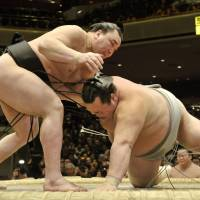 Back on top: Yokozuna Harumafuji (left) heads into the Spring Grand Sumo Tournament in Osaka this Sunday coming off the back of a perfect record at the New Year basho. | KYODO
