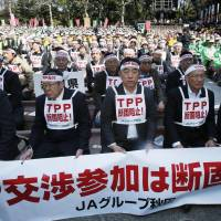 Unyielding: Farm and related consumer lobbyists stage a rally Tuesday in the outdoor amphitheater in Tokyo's Hibiya Park to protest Japan's pending participation in the Trans-Pacific Partnership free-trade talks.    KYODO