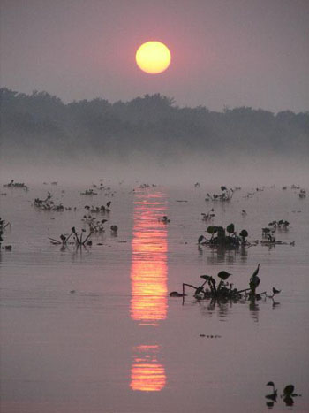Land of contrasts: Lying largely in Brazil's Matto Grosso do Sul State, but extending into parts of Bolivia and Paraguay, the seasonal wetland of the Pantanal — up to 1 1/2 times the size of Greece in the rainy season — combines beautiful scenery, gorgeous sunsets and stunning wildlife.