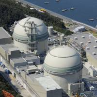 Next up: Reactors 3 and 4 at Kansai Electric's Takahama nuclear plant in Fukui Prefecture are seen in March 2012.   KYODO