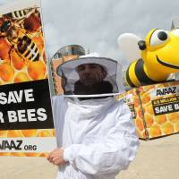 EU to slap two-year ban on bee-harming pesticides