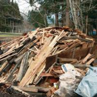 Waste not, want not: A pile of leftover timber from our Afan Woodland Trust (above) that we will entirely reuse or recycle. | C.W. NICOL PHOTO