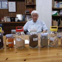Man of vision: Koichiro Nakajima, president of Okayama Prefecture-based Meiken Laminated Wood Co., with samples of wood chips, oil and ash on his desk. | ATSUSHI ISHII PHOTO