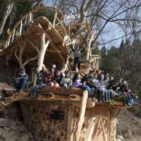 Our tree dragon fires new hopes for tsunami survivors