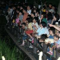 Fussa river is abuzz with light