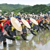 Rice songs: Women take part in a rice- planting festival in Hiroshima. | KYODO