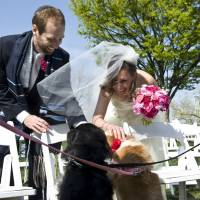 Perfect day: Ari Houser and Deborah Srabstein greet her dogs Buddy Jupiter and Olive April after their wedding ceremony in Baltimore, Maryland, in April 2012. They say they found guests using cell phones distracting at their wedding. | THE WASHINGTON POST