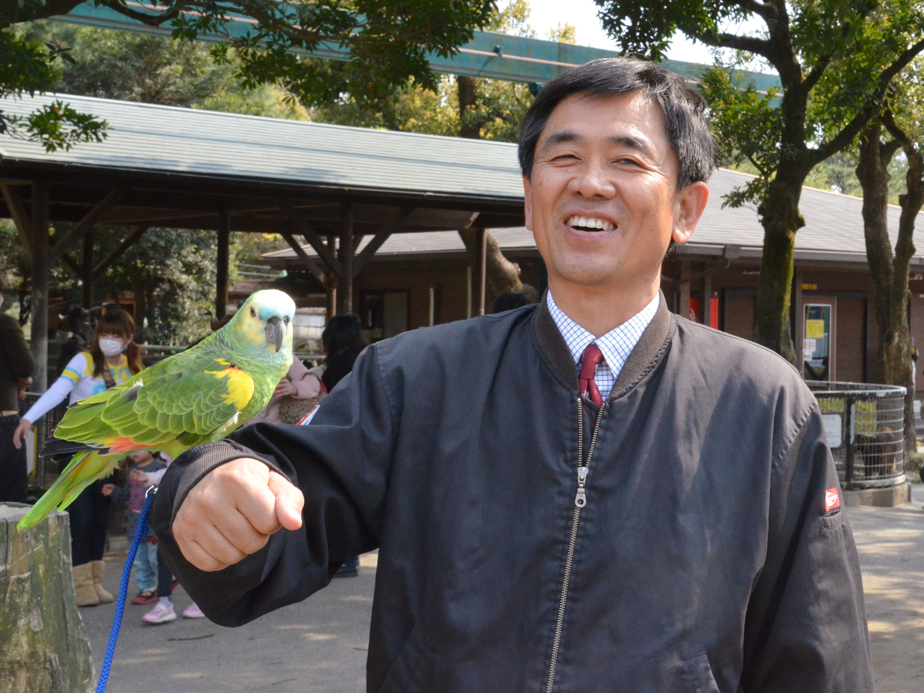 Star attraction: A Blue-fronted Amazon parrot named Tiffany perches on the arm of Toshihisa Deguchi, head of Miyazaki City Phoenix Zoo, on March 10.   KYODO