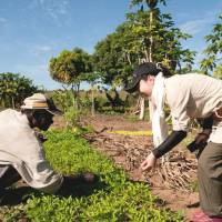 Green thumb: A Japanese official works with a farmer in Mozambique on a ProSavana project in June 2011. | COURTESY OF JICA/MIKA TANIMOTO