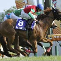 Not expected: Meiner Ho O, ridden by Daichi Shibata, gallops to victory in Sunday's NHK Mile Cup at Tokyo Racecourse. The 3-year-old was the 10th choice in the 18-horse field. | KYODO