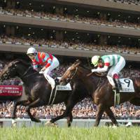 French fancy: Yutaka Take aboard Kizuna (left) rides to victory in the Japanese Derby at Tokyo Racecourse on Sunday. | KYODO