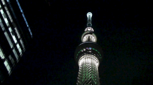 [VIDEO] Tokyo Skytree Dream Christmas: Lighting Ceremony