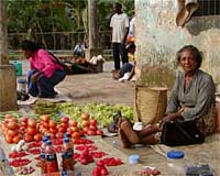 A market woman in Los Palos, on the eastern tip of East Timor.