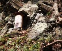 Honey trap: A typical Tsushima beehive fashioned from a hollowed-out log.