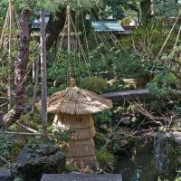 Winterized: These conical bamboo-and-twine yuki-tsuri ropes stop snow settling on tree branches and snapping them off.   STEPHEN MANSFIELD PHOTO