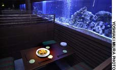 A tranquil ambience and Indonesian cuisine shimmer under the aquarium of Lime in Ginza.