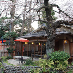 Natural setting: Innsyoutei, in the heart of Tokyo's Ueno Park, was founded in 1875. The old tearoom in the front was left untouched in the renovations.
