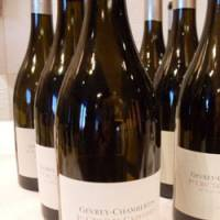 Gevrey-Chambertin, Les Cazetiers Premier Cru: Olivier Bernstein's Pinot, rich with the scent of berries.