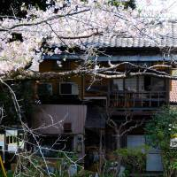 In bloom: Situated in Kita-Kamura, a short train ride from Tokyo, En overlooks an ancient pond with cherry trees. The multi-course kaiseki meals include a dish of premium sashimi. | ROBBIE SWINNERTON