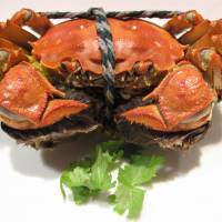 Chef's in Shinjuku Gyoenmae is one of the best spots in the capital for Shanghai hairy crab.