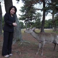 Labor of love: Chiharu Fukumoto, an employee of the nonprofit Foundation for the Protection of Deer in Nara Park, feeds a friendly deer.