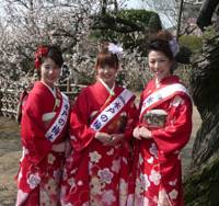 Flower power: Three of the 10 'Miss Mito' women chosen to represent the city and its Plum Blossom Festival in 2010 pose before floribundant trees of that ilk, from left to right: Chiho Koizumi, Megumi Sakamoto and Kumiko Noguchi.