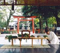 Shrine offers up rare porridge