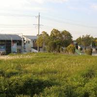 Bright energy prospects: New solar houses under construction in Chiba Prefecture. | PHILIP BRASOR