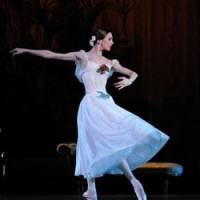 Finely tuned: Svetlana Zakharova dancing at the Bolshoi in Moscow.
