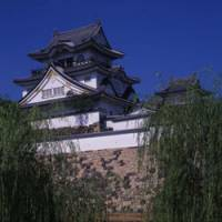 Art set in stone: The majestic lines of Kishiwada Castle (above), and a view of the stunningly original 1953 'Garden of Eight Battle Formations' at Kishiwada Castle.