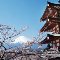 Mountain majesty: Cherry trees are in full bloom outside a five-story pagoda in Sengen Park in Fujiyoshida, Yamanashi Prefecture, at the base of Mount Fuji in 2009. UNESCO decided Saturday to give Japan's highest mountain World Heritage status. | KYODO