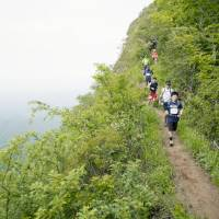 Mountain lions: Participants make their way through a downhill section of the OSJ Okukuji Trail 50K footrace last year in Ibaraki Prefecture. | KYODO
