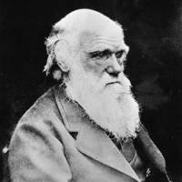 Time a Darwinian 'true myth' evolved to rival religion