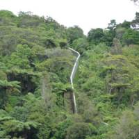 Karori: A wildlife sanctuary for our times