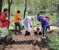 Leading the way: Amway volunteers spread our homegrown woodchips to make paths in the woods that are pleasant to walk on without harming trees' roots. | C.W. NICOL