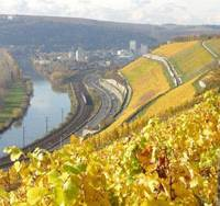 Vinter's delight: The River Mosel (above) wends through beautiful vineyard-lined slopes beloved of Riesling growers as it makes its scenic way toward its confluence with the majestic River Rhine at Koblenz. German Wine Princess Sarah Schmitt (below) during her recent promotional stopover in Tokyo.