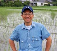 Going natural: Takashi Aoshima (above) of the brewery Aoshima Shuzo in front of his low-crop-density organic rice field; below: the Matsushita rice that the brewery grows for its organic sake. | MELINDA JOE PHOTOS