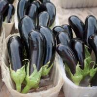 The color purple: Fall nasu (eggplant) contains anthocyanin, which gives the vegetable its purple color and is said to be beneficial to health. | MAKIKO ITOH PHOTO