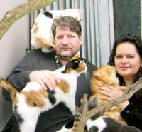 Stray cats captivated by couple's efforts to help