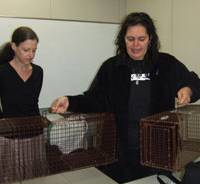 Trapped with love: Susan Roberts of Japan Cat Network (right) on March 8 in Tokyo exhibits traps used by the group and its volunteers in TNR (trap, neuter, return) projects to help stop the unnecessary suffering of stray animals | ULARA NAKAGAWA