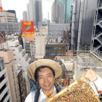 What a buzz: Ginza Honey Bee Project co-founder Atsuo Tanaka holds a frame from a Pulp & Paper Building hive. Ginza honey (below) comes from combs that bees build on the frames.