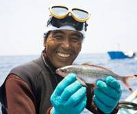 Every one counts: An Okinawa spear-fisherman shows off a catch. | CHIKAKO FURUYA