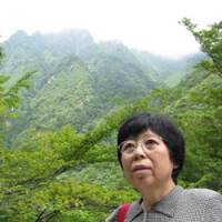Action woman: Mariko Moriyama, founder of the Japan Bear and Forest Association, in an area of Mie Prefecture that an affiliated trust aims to buy to conserve the natural forest habitat. | WINIFRED BIRD