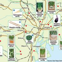 Greens gone by: A map of some of the local purebred vegetables grown in and around present-day Tokyo during the Edo Period (1603-1867) — including starred ones that are now extinct — shows that farmers back then cultivated a wide variety of local veggies. | JAPAN TIMES GRAPHIC