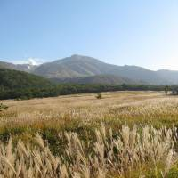 Former common grazing land now incorporated into the Aso-Kuji National Park in Kyushu.   WINIFRED BIRD PHOTO